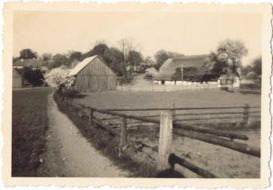 Kirchensteig in den 50er Jahren, rechts Büdnerei Nr. 7, (Dorfstr. 8, Fam. Janowski, http://urlaub-unterm-reetdach.com)