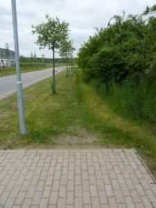 Pfad in Richtung Kiebitzweg, hier soll der Fußweg entstehen.